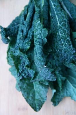 Lacinato Kale © KETMALA'S KITCHEN 2012-13