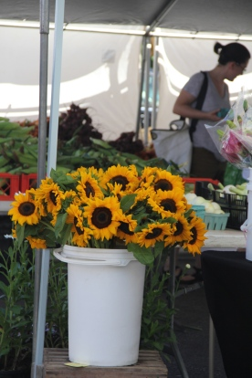 Sunflowers at Growers Market, PA © KETMALA'S KITCHEN 2012-13