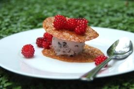 Ice cream with wine berry © KETMALA'S KITCHEN 2012-13