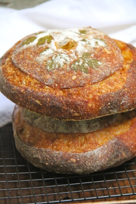 Rustic Garlic Bread from Advanced Artisan Bread Class © KETMALA'S KITCHEN 2012-13