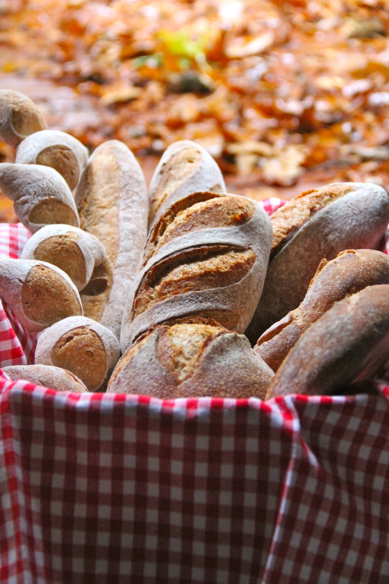 Advanced Artisan Bread Class © KETMALA'S KITCHEN 2012-13