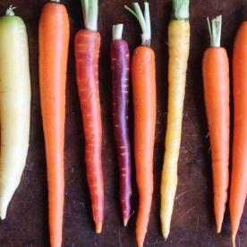 Rainbow Carrots © KETMALA'S KITCHEN 2014