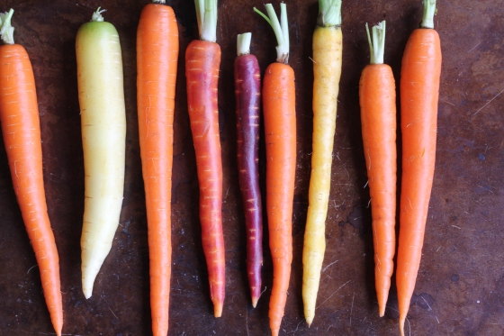 Rainbow Carrots © KETMALA'S KITCHEN 2014