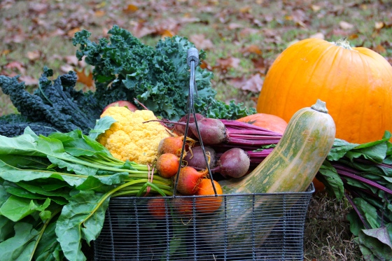 Fall Bounty Basket @Ketmala's Kitchen 2014