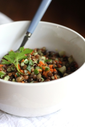 French Lentils @Ketmala's Kitchen 2014